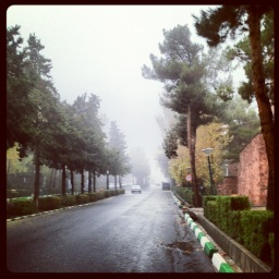 مه بهشتي :دي